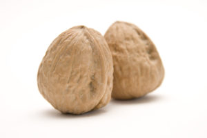 Nuts placed as testicles